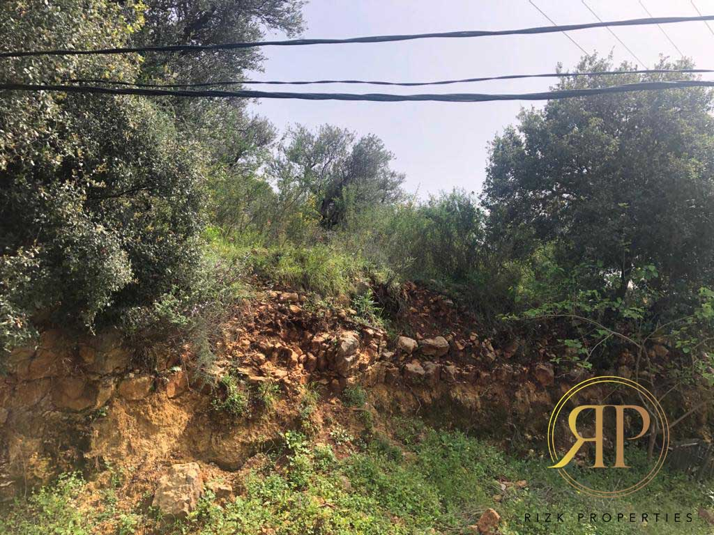 Very Well Located Land in WADI CHAHROUR !